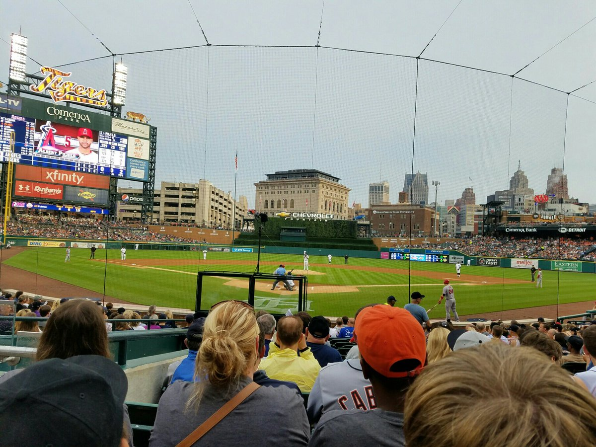 Netting behind home plate at Comerica Park, Home of the Detroit Tigers