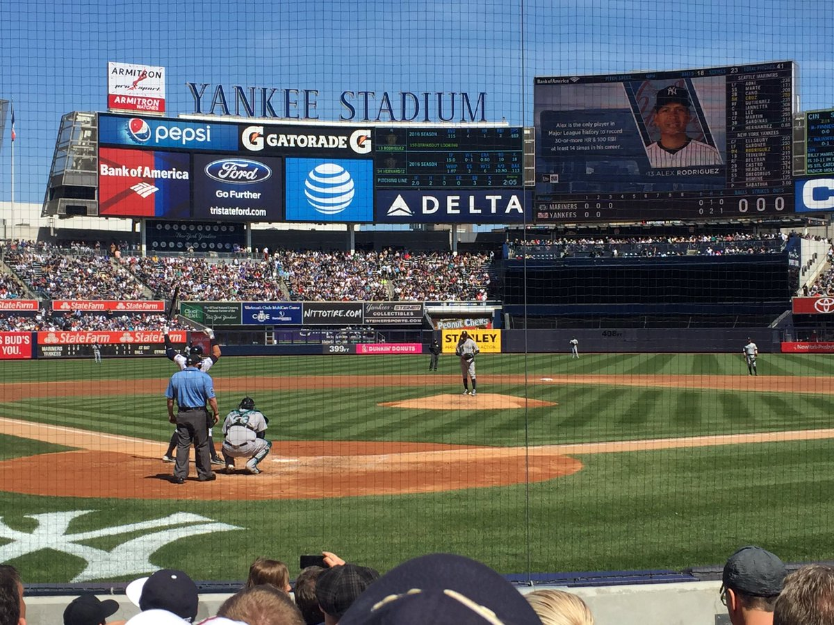 View of the Netting at Yankee Stadium, Home of the New York Yankees