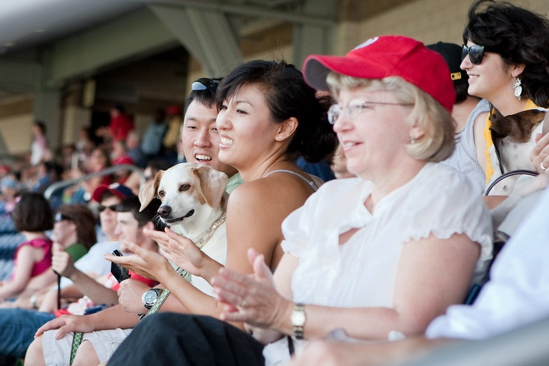 Photo of a couple and their dog at a baseball game.